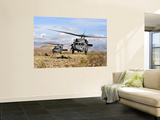Two HH-60 Pavehawk Helicopters Preparing to Land Wall Mural
