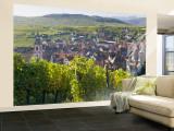 Old Wine Town of Riquewihr and Vineyard, Alsace, France Fototapete – groß von Peter Adams