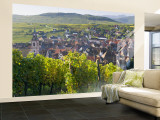 Old Wine Town of Riquewihr and Vineyard, Alsace, France Wall Mural – Large by Peter Adams