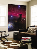 The Horsehead Nebula Wall Mural