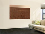 Rocky Surface of Mars Wall Mural