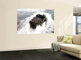 Amphibious Assault Vehicle Wall Mural