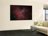 The Eagle Nebula Wall Mural