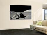 Apollo 17 Wall Mural
