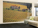 Vineyard, Greve in Chianti, Tuscany, Italy Wall Mural – Large by Walter Bibikow