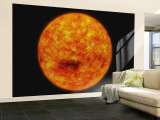 Sun Wall Mural  Large