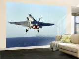 F/A-18C Hornet Wall Mural  Large