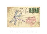 Postcard Dragonfly I Print by Nancy Shumaker Pallan