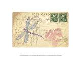 Postcard Dragonfly I 高品質プリント : ナンシー・シューメイカー・パラン