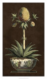 Potted Pineapple I Giclee Print
