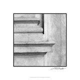 Enduring Composition I Premium Giclee Print by Laura Denardo