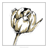 Tulip Sketch II Giclee Print by Ethan Harper