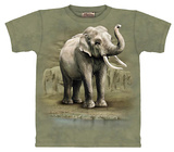 Asian Elephants T-shirts