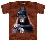 Orangutan Baby T-shirts
