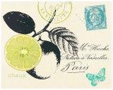 Lime Letter Prints by  Z Studio