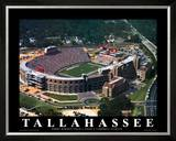 Florida State - Tallahassee, FL Print by Brad Geller