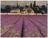 Lavender Weekend Affiche par James Wiens