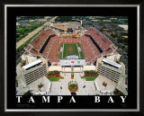 NFL Stadium - Tampa Bay, Florida Print by Mike Smith