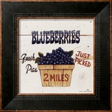 Blueberries Just Picked Prints by David Carter Brown