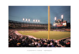 Comerica Park, Detroit Posters by Ira Rosen