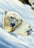 Polar Bear Mama Posters by Renato Casaro