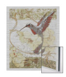 Humming Bird II Metal Print by Sofi Taylor