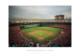 Dolphins Stadium, Miami Print by Ira Rosen