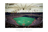 Metrodome, Minneapolis Prints by Ira Rosen