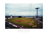 Brooklyn Cyclones Print by Ira Rosen