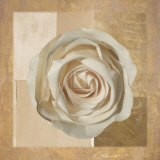 Warm Rose II Print by Malcom Sanders