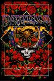 Grateful Dead 40th Anniversary Plakaty