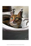Orange Cat in the Sink Poster by Robert Mcclintock