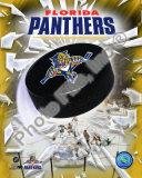 Florida Panthers Logo Photo