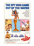 The Glass Bottom Boat, with Edward Andrews, Doris Day, Arthur Godfrey, and Rod Taylor, 1966 Print