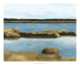Wet Lands II Giclee Print by Norman Wyatt Jr.