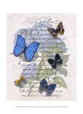 Hydrangea Butterflies I Posters by Ginny Joyner