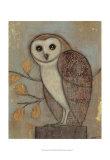 Ornate Owl II Posters van Norman Wyatt Jr.