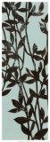 Ebony Eucalyptus on Blue I Print by Norman Wyatt Jr.