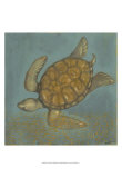 Sea Turtle II Art by Norman Wyatt Jr.