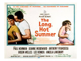 The Long, Hot Summer, Joanne Woodward, Paul Newman, Lee Remick, Anthony Franciosa, 1958 Photo