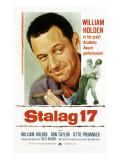 Stalag 17, William Holden, 1953 Photo