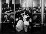 Group of Immigrants Waiting in a Holding Pen to Be Examined by Doctors, Ellis Island, 1902 Photo