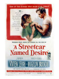 Streetcar Named Desire, Vivien Leigh, Marlon Brando, 1951 Photo