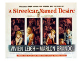 Streetcar Named Desire, Vivien Leigh, Marlon Brando, Kim Hunter, Karl Malden, 1951 Photo