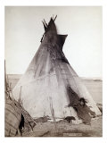 Young Oglala Girl Sitting in Front of a Tipi, with Puppy Beside Her, Pine Ridge, South Dakota, 1891 Photo