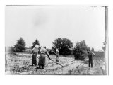 African American Farmers, Three Women and One Man, Hoeing a Field. Georgia, 1899 Photo