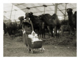 Alice Roosevelt Longworth with Baby Daughter Paulina at the Circus, May 5, 1926 Photo