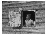 African American Girl Looking Out the Window of a Plantation Log Cabin Tenants Home, April 1937 Print