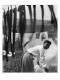 Young African American Woman Working in Midst of Clotheslines Heavy with Sheets and Stockings, 1902 Photo