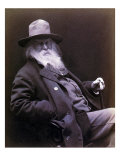 Walt Whitman American Poet, Author, and Journalist in 1877 Portrait Posters